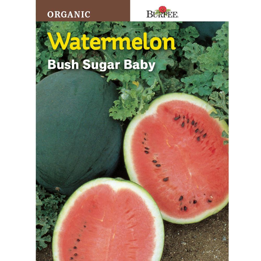 Organic Watermelon Bush Sugar Baby Seed