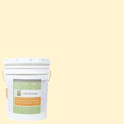 5 gal. Air .04 Flat Interior Paint