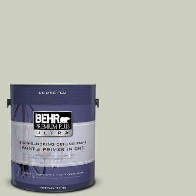 1 gal. No.UL210-11 Ceiling Tinted to Sliced Cucumber Flat Interior Paint and Primer in One