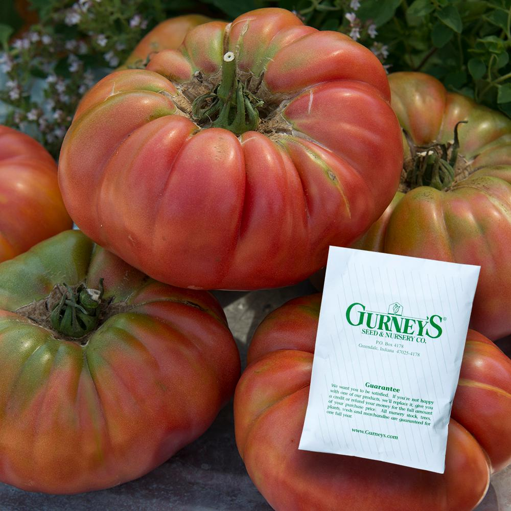Tomato Hundred Poods: variety description, photo, yield reviews 11