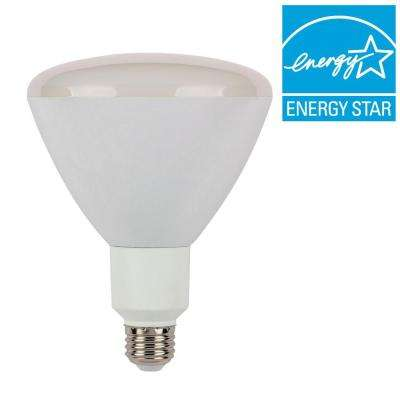 70W Equivalent Bright White R40 Reflector Dimmable Flood LED Light Bulb