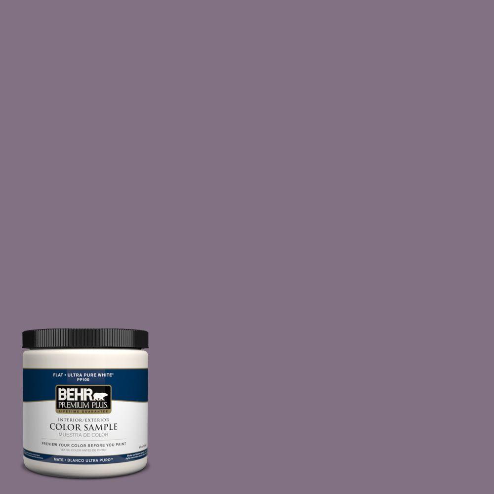 8 oz. #HDC-SP14-9 Decorative Iris Interior/Exterior Paint Sample