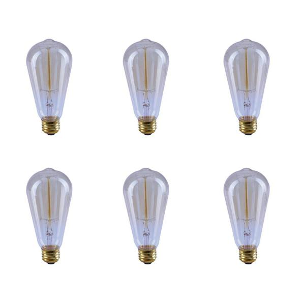 40-Watt ST19 Dimmable Incandescent Amber Glass Vintage Edison Light Bulb with Cage Filament Soft White (6-Pack)
