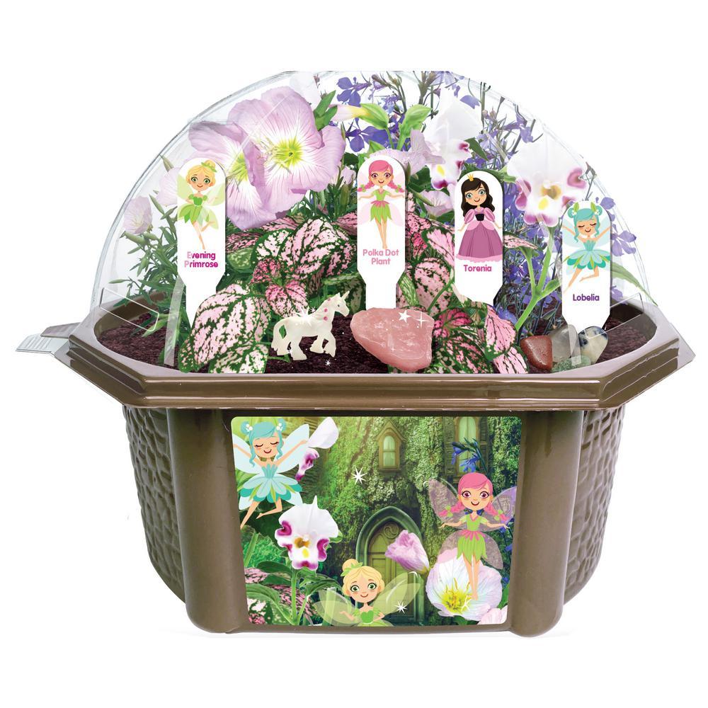 Biosphere Clear Plastic Fanciful Fairy Garden Indoor Garden Terrarium Indoor Garden Seed Starter Kit
