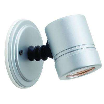 Myra 1-Light Silver Metal Outdoor Spot Light with Clear Glass Shade