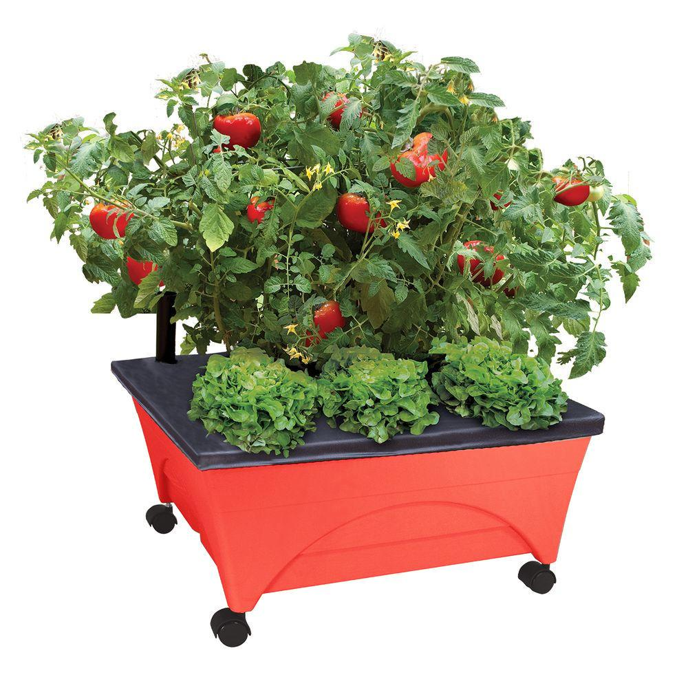 CITY PICKERS 24.5 in. x 20.5 in. Patio Raised Garden Bed Kit with Watering System and Casters in Tomato Red