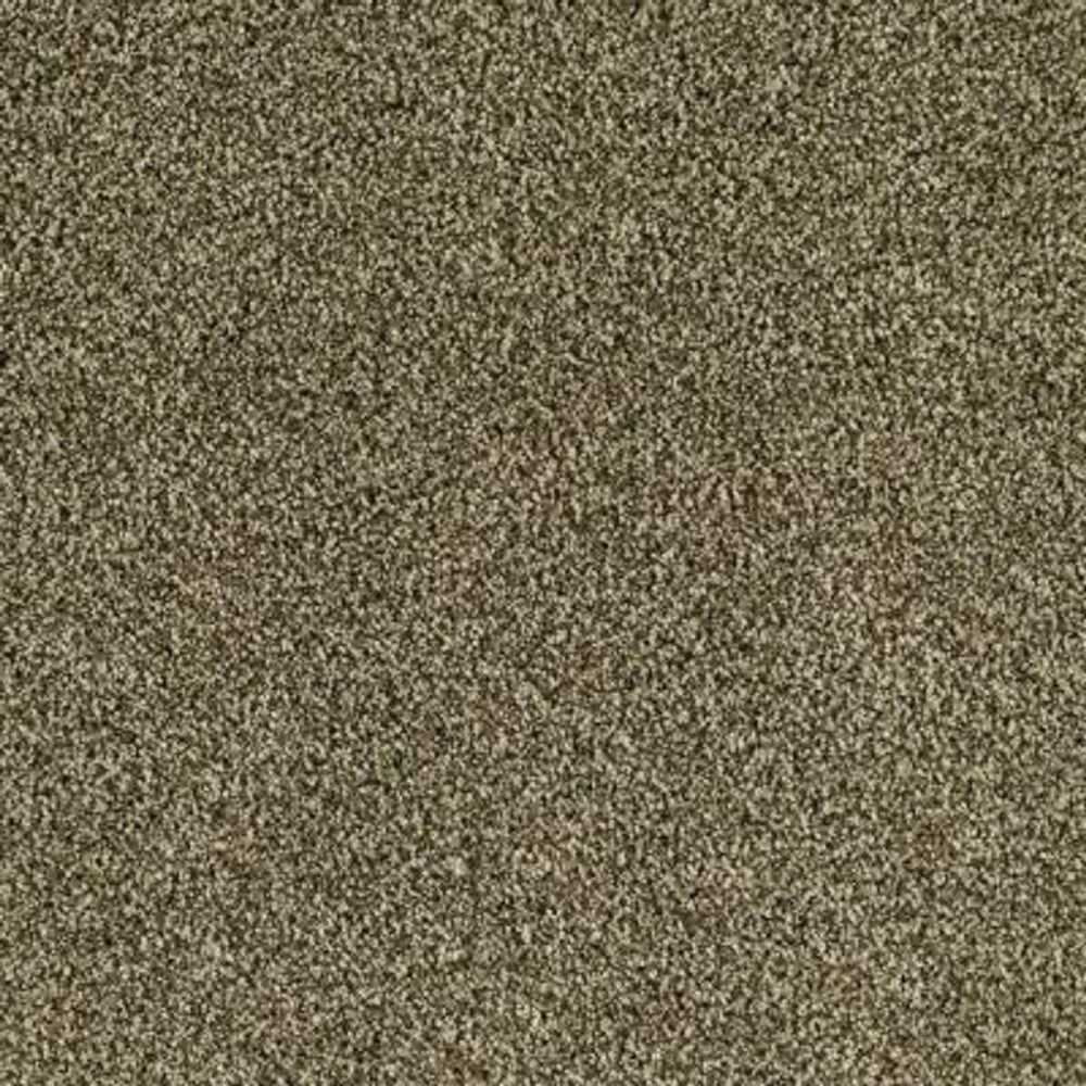 Carpet Sample - Lavish II - Color Garden Cucumber Texture 8 in. x 8 in.