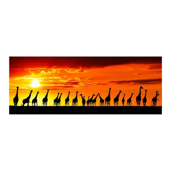 """Yosemite Home Decor 24 in. x 63 in. """"African Sunset"""" Tempered Glass Wall Art"""