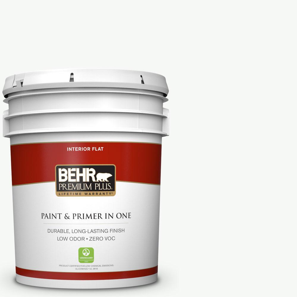 5 gal. #HDC-NT-04G Blanca Peak Zero VOC Flat Interior Paint