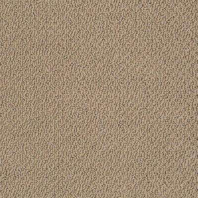 Carpet Sample - Treasure - In Color Bird's Nest Loop 8 in. x 8 in.