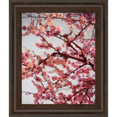 "22 in. x 26 in. ""Cherry Blossoms II"" by Susan Bryant Framed Printed Wall Art"