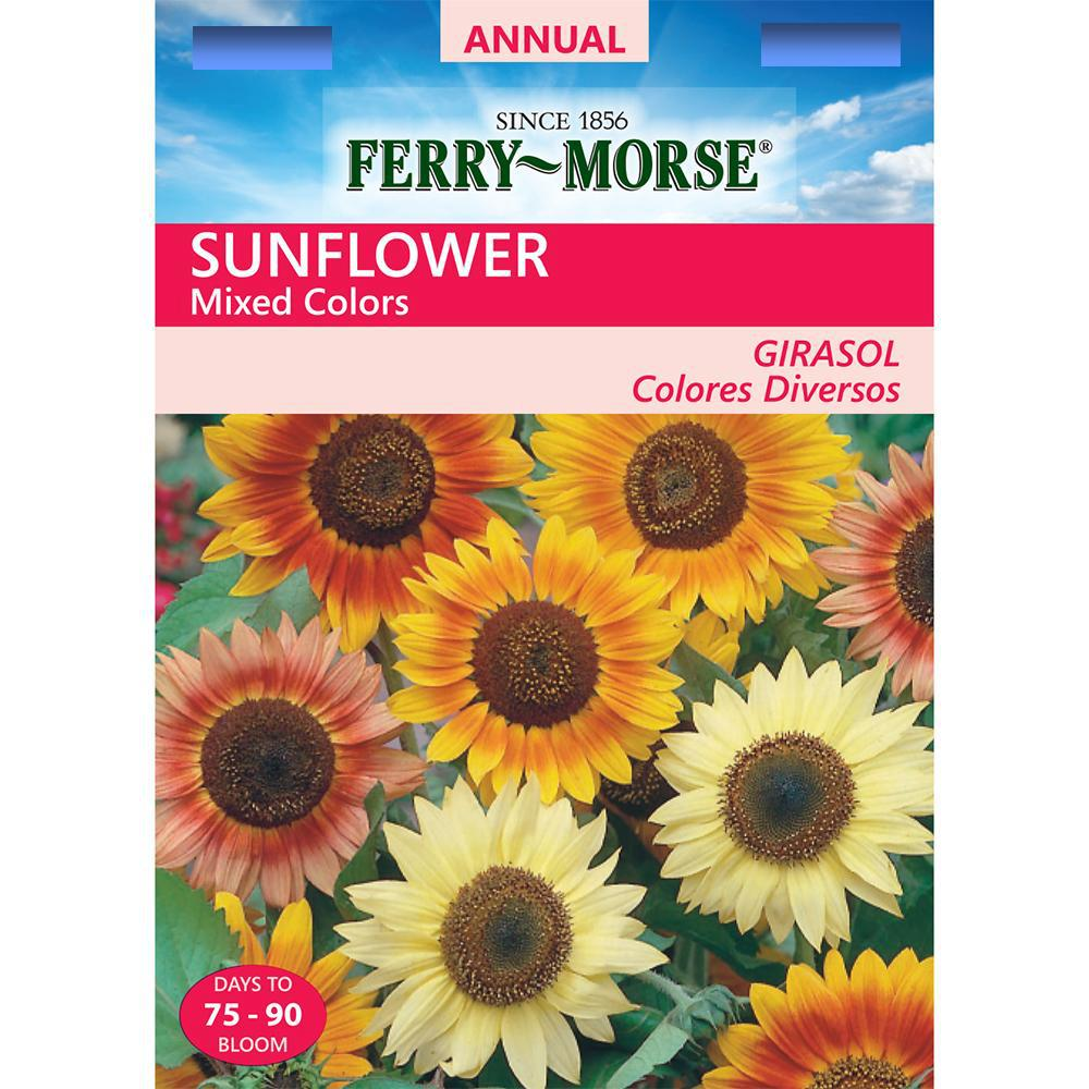 Sunflower Mixed Seed