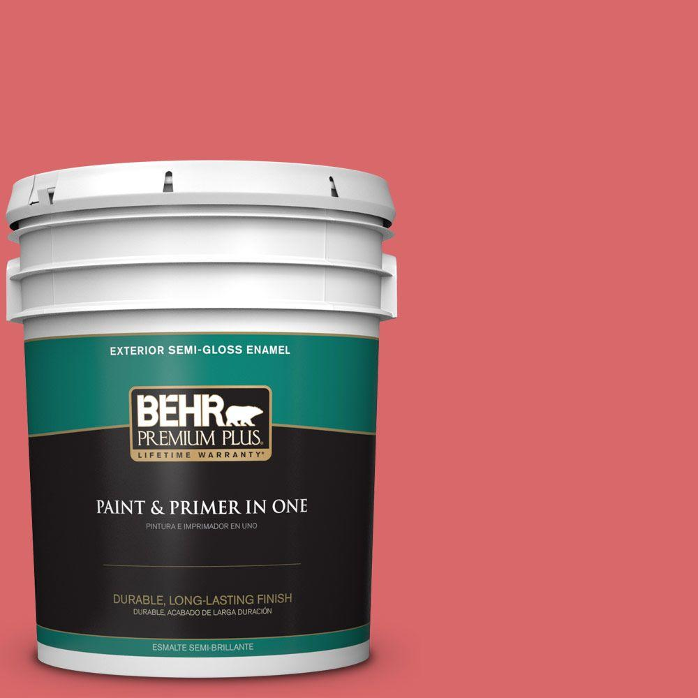 5-gal. #160B-6 Coral Expression Semi-Gloss Enamel Exterior Paint
