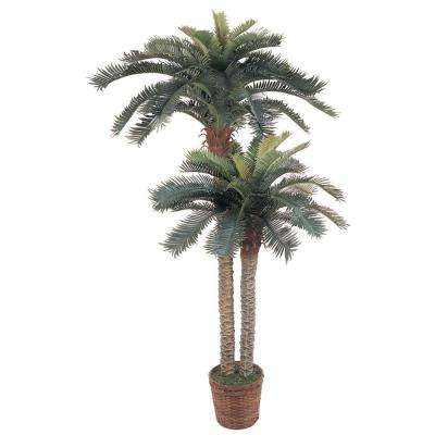 6 ft. and 4 ft. Sago Palm Double Potted Silk Tree