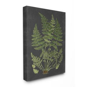 ''Botanical Drawing Green Black Design'' by Lettered and Lined Canvas Wall Art 48 in. x 36 in.