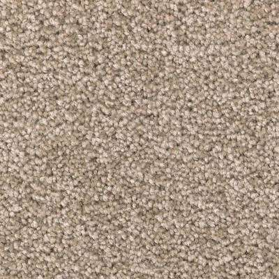 Carpet Sample - Unblemished I - Color Matterhorn Textured 8 in. x 8 in.