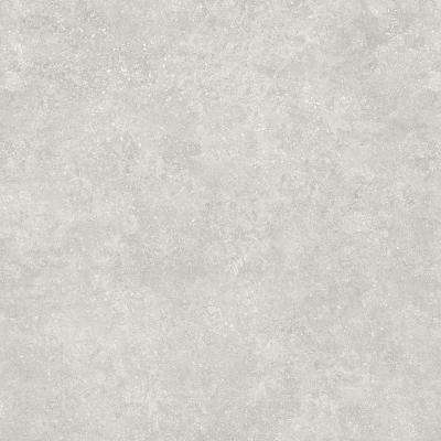 Starry Light 16 in. x 32 in. Luxury Vinyl Plank Flooring (24.89 sq. ft. / case)