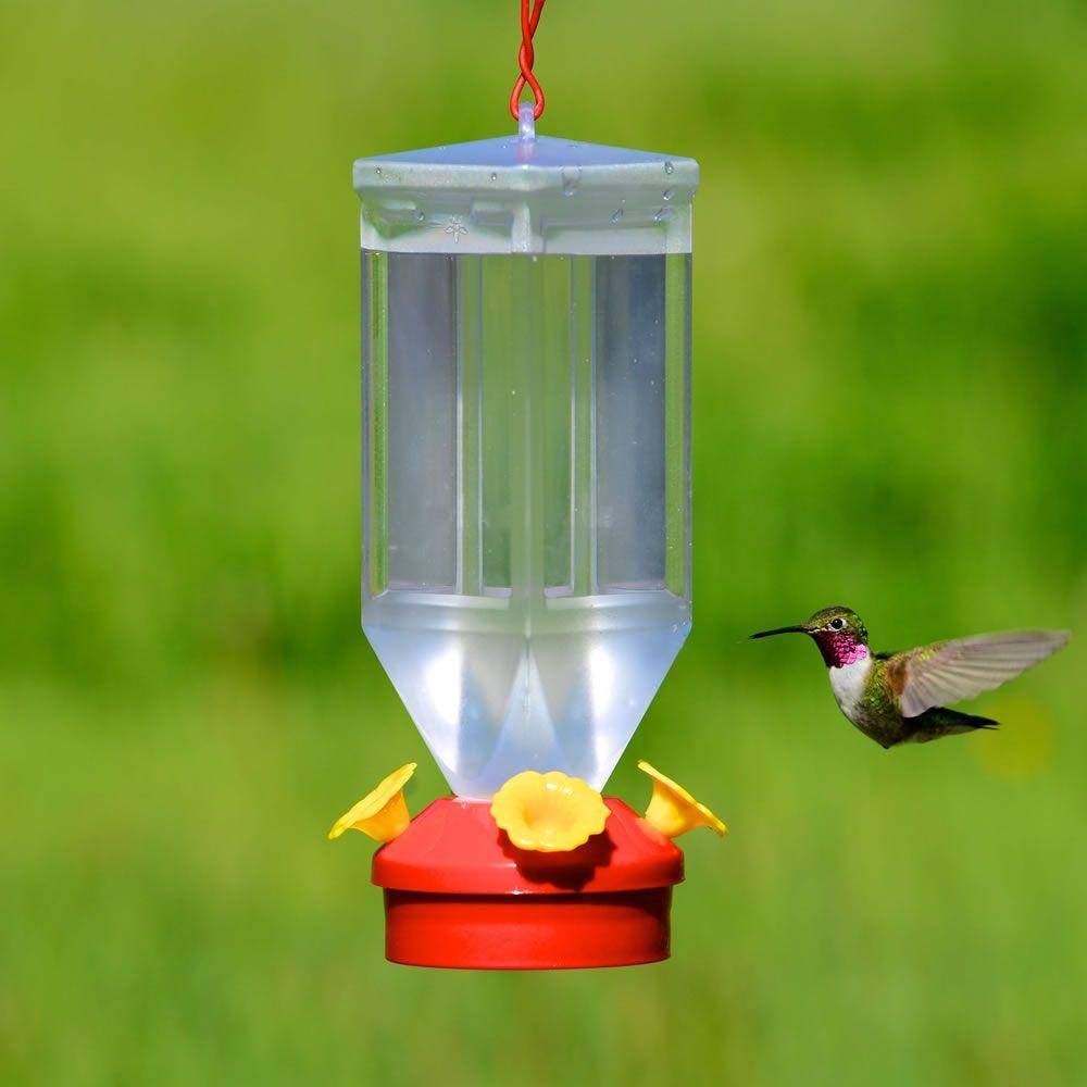 Clear Plastic Lantern Hummingbird Feeder - 18 oz. Capacity
