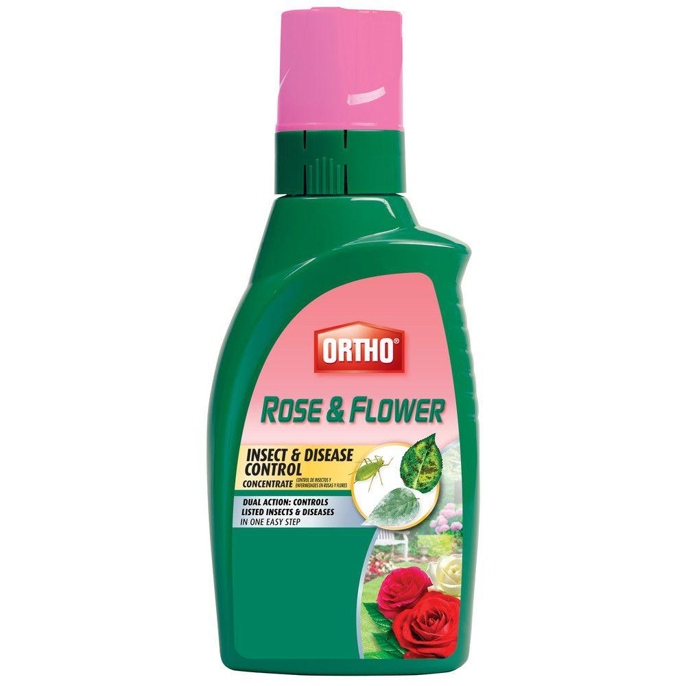 Ortho Rose and Flower 32 oz. Insect and Disease Control Concentrate