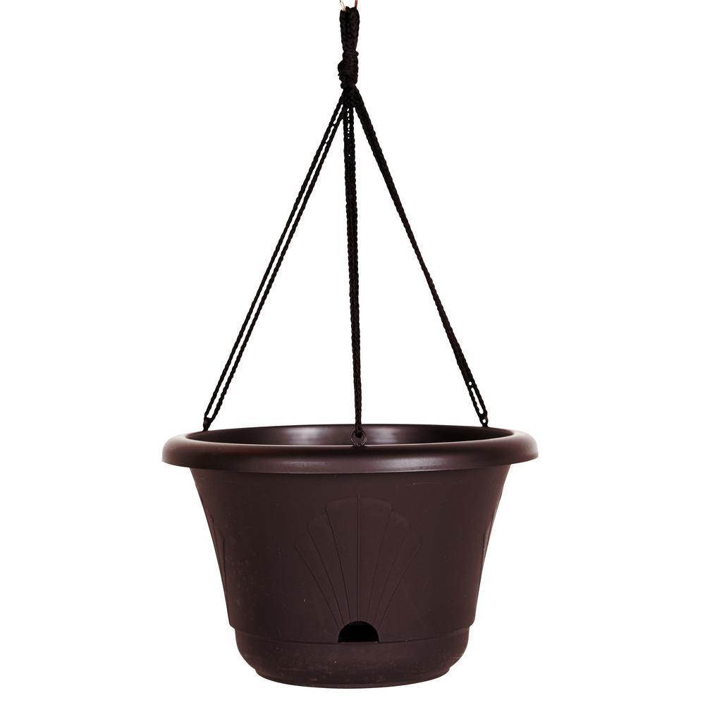 Lucca 13 in. Exotica Plastic Self Watering Hanging Basket