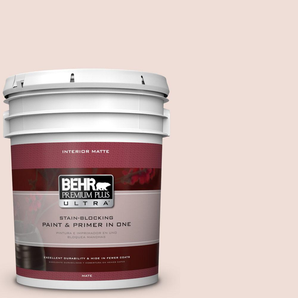 5 gal. #BIC-05 Shabby Chic Pink Matte Interior Paint