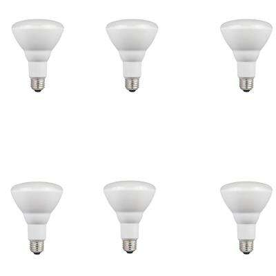 65W Equivalent Cool Bright BR30 Dimmable LED Light Bulb (6-Pack)
