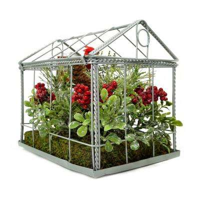 9 in. Red Cardinal Boxwood and Berry Artificial Christmas Greenhouse Arrangement