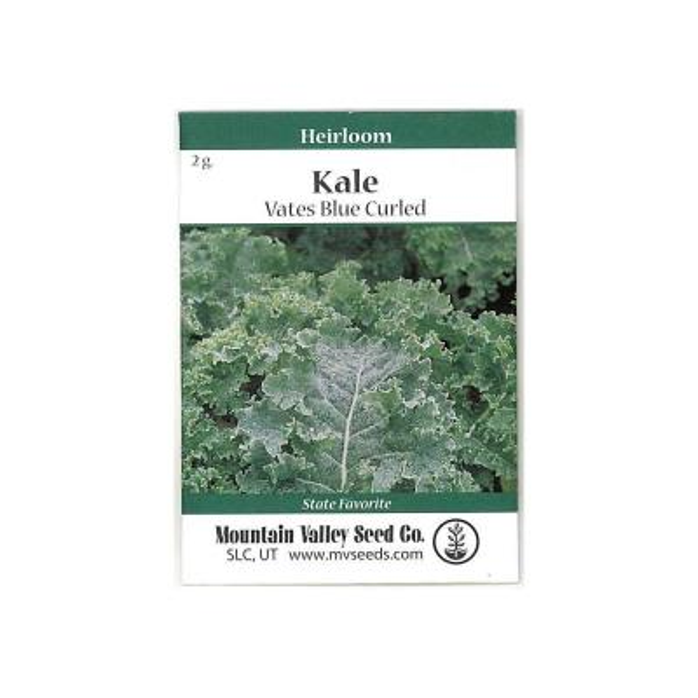 2 g Organic Kale Garden Seeds Vates Blue Scotch Curled Non-GMO, Heirloom Vegetable Gardening, Farm and Microgreens