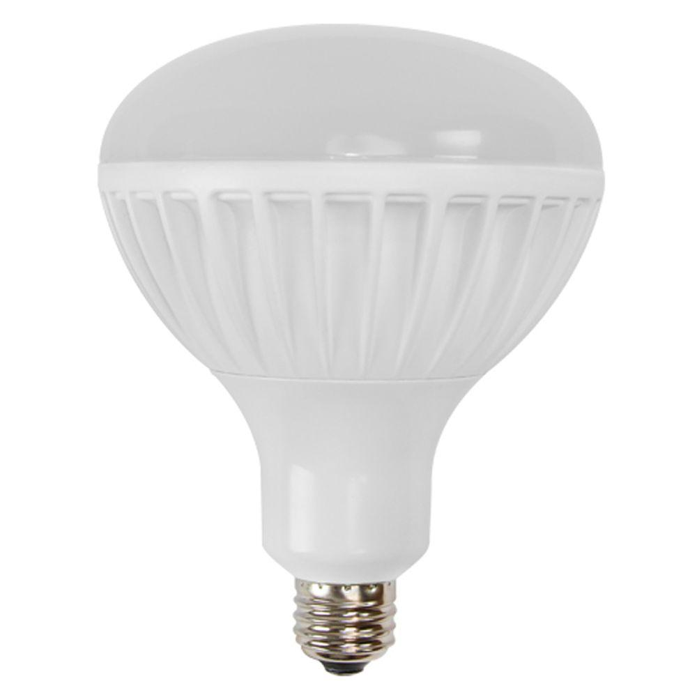 Philips 100W Equivalent Daylight A19 LED Light Bulb (2