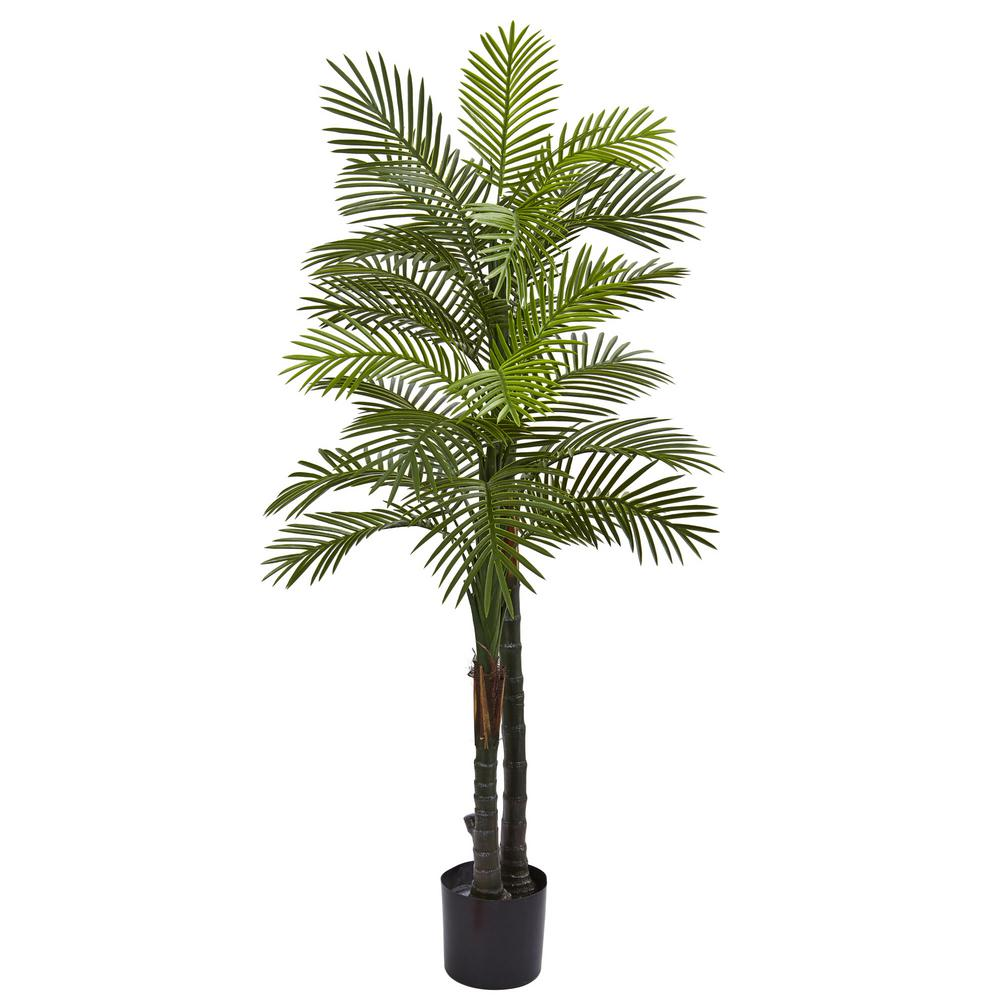 5.5 ft. Double Robellini Palm Tree UV Resistant (Indoor/Outdoor)