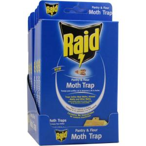 Raid Pantry Moth Trap (12-Pack) from Insect Traps
