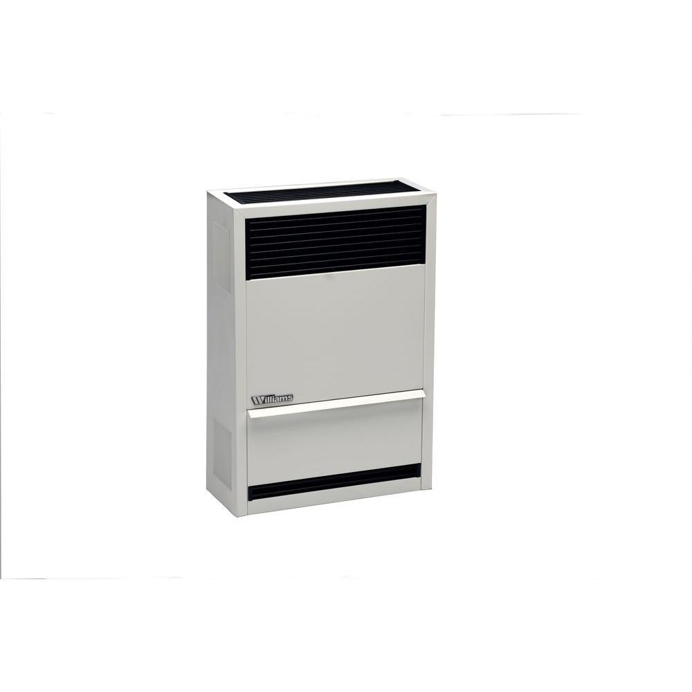 14,000 BTU/hr Direct-Vent Wall Heater Liquid Propane Gas