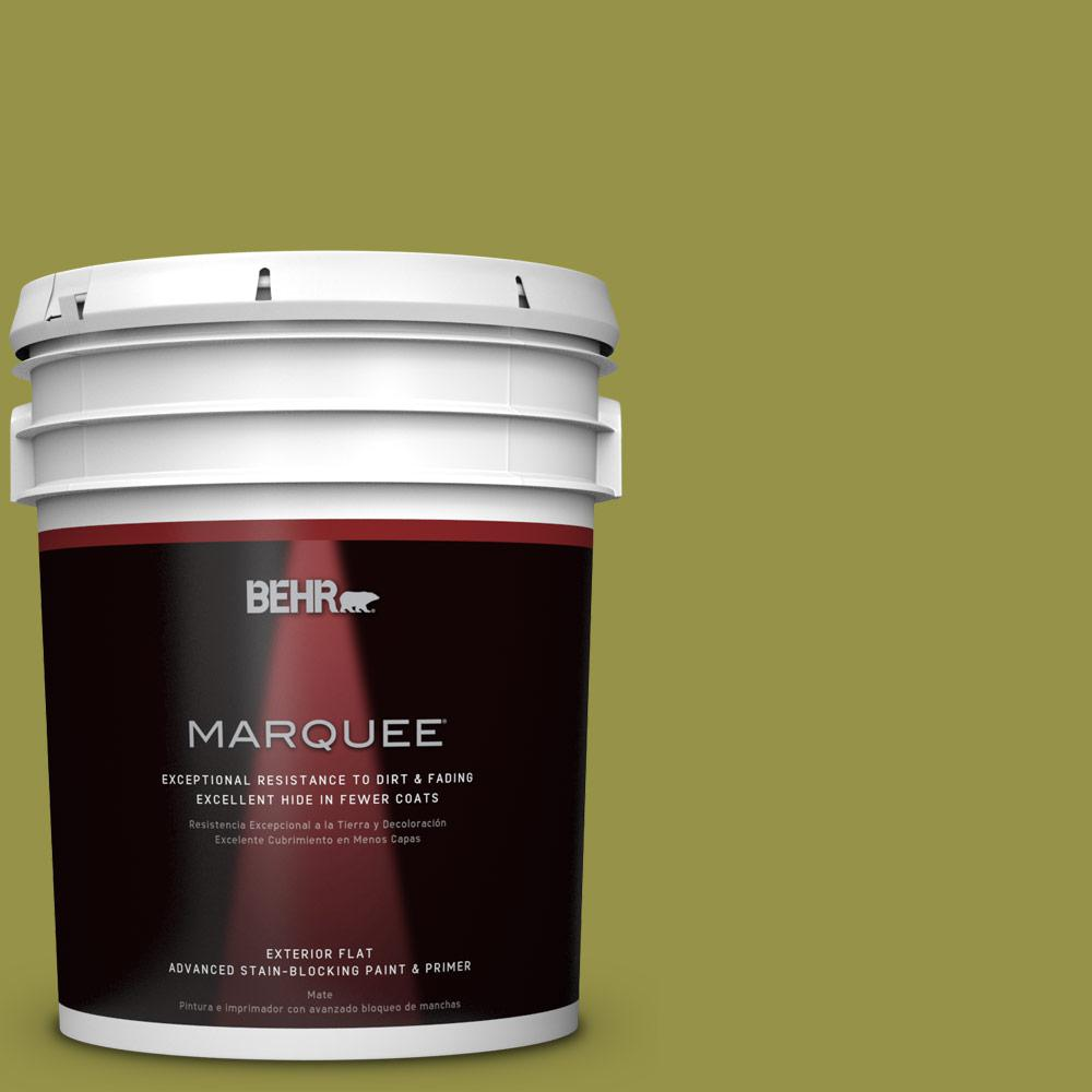 Home Decorators Collection 5-gal. #HDC-FL13-8 Tangy Dill Flat Exterior Paint
