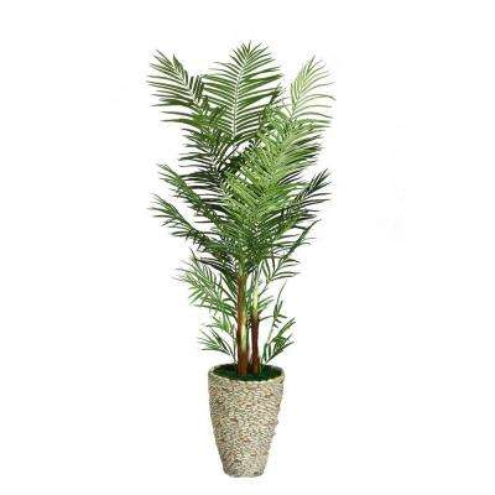82 in. Tall Palm Tree in 16 in. Fiberstone Planter