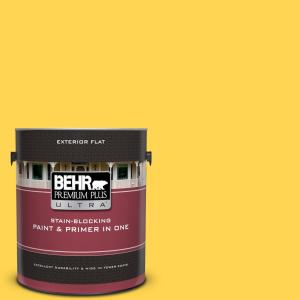 1 gal. #P300-6 Buzz-In Flat Exterior Paint and Primer in One