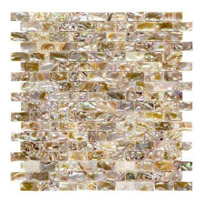 Pacific Coast 11-1/2 in. x 11-1/2 in. x 3 mm Shell Brick Mosaic Tile