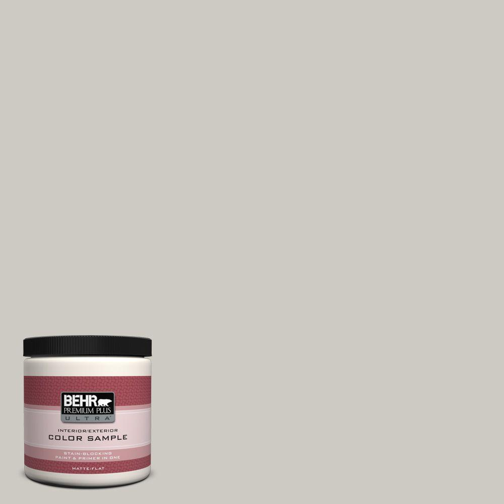 BEHR Premium Plus Ultra 8 oz. #790C-3 Dolphin Fin Interior/Exterior Paint Sample