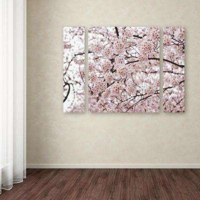 """30 in. x 41 in. """"Cherry Blossoms"""" by Ariane Moshayedi Printed Canvas Wall Art"""