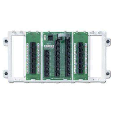 Structured Media 12-Port Panel