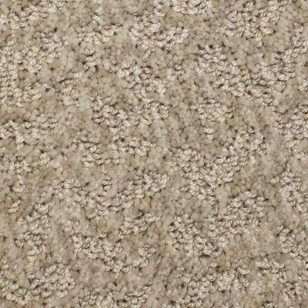 Meteoric - Color Virtual Pattern 12 ft. Carpet