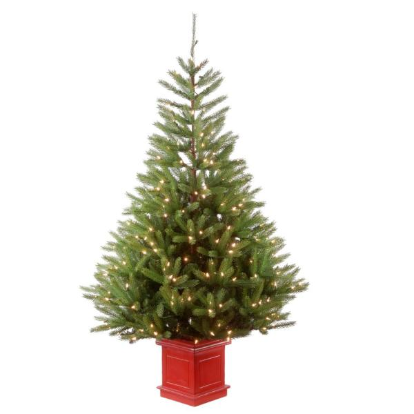 5 ft. Topeka Spruce Entrance Tree with Clear Lights