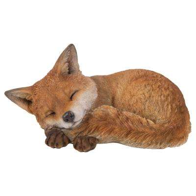 Fox Pup Sleeping
