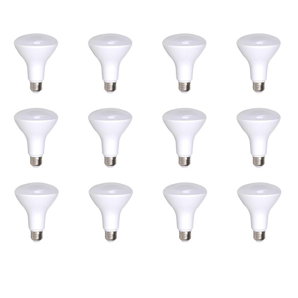 100-Watt Equivalent R40 Dimmable Warm White 25000-Hour LED-Light Bulb (12-Pack)