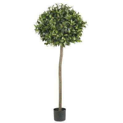 5 ft. Green Sweet Bay Ball Topiary Silk Tree