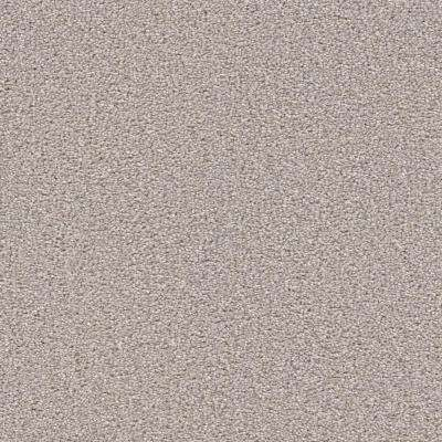 Nimble Creek - Color Pebble Texture 12 ft. Carpet
