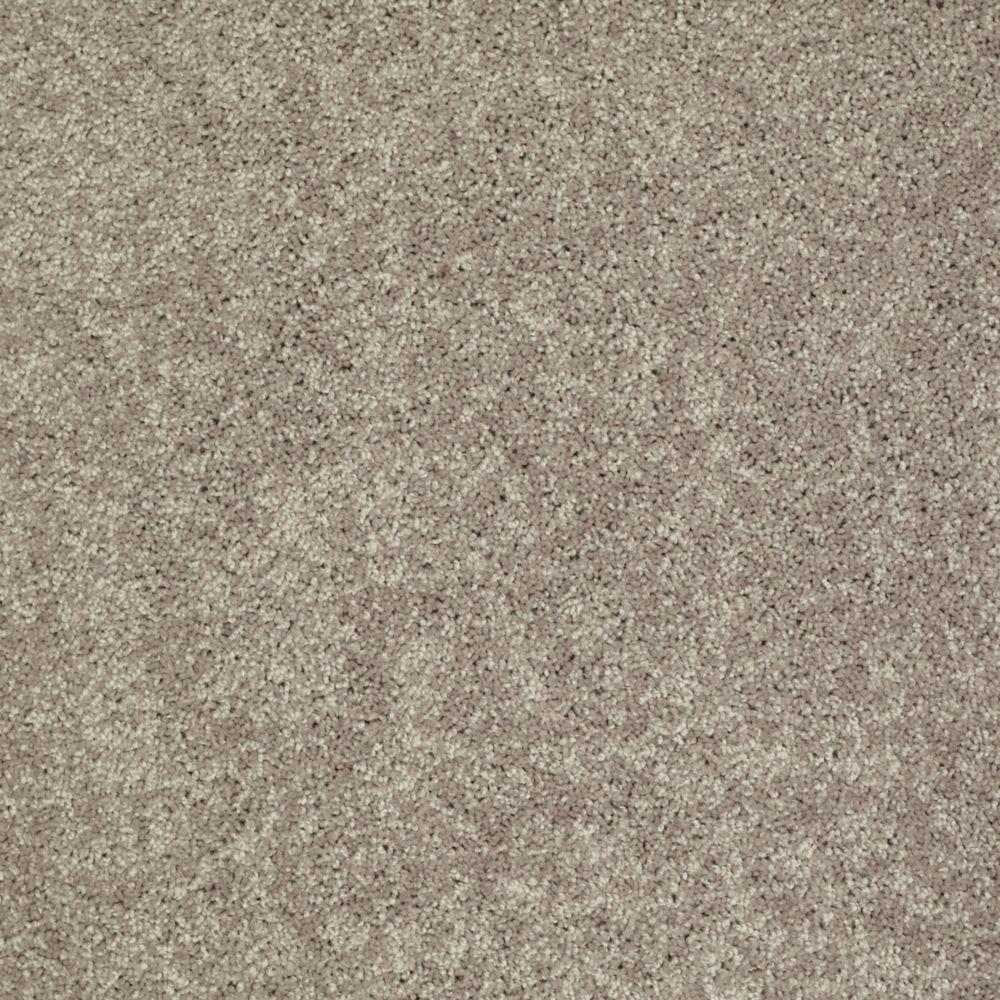 Palmdale I - Color Mocha Nut 12 ft. Carpet