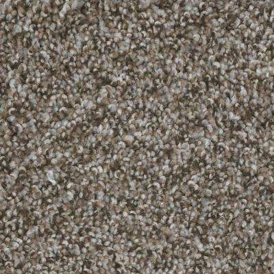 Montrose - Color Debut Texture 12 ft. Carpet