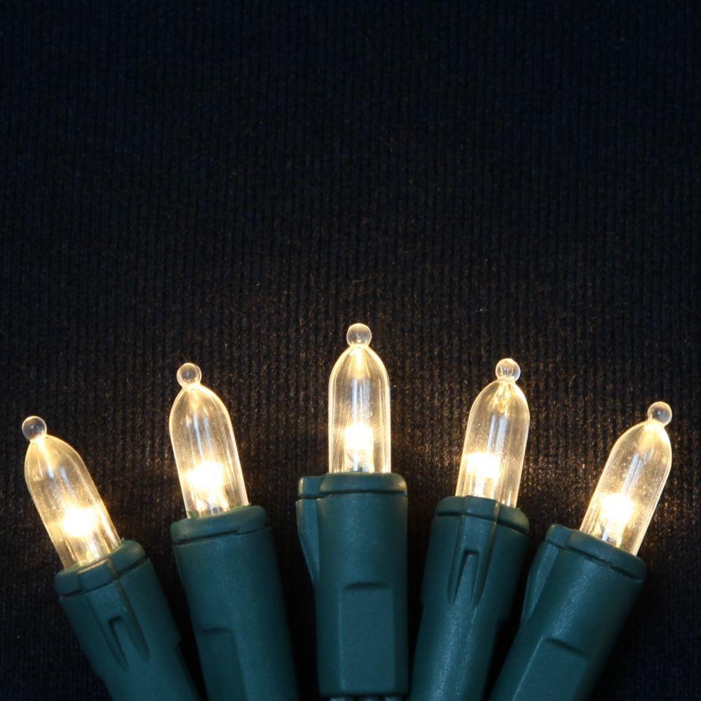 Martha Stewart Living Color Soft 50-Light LED Warm White Italian Light Set