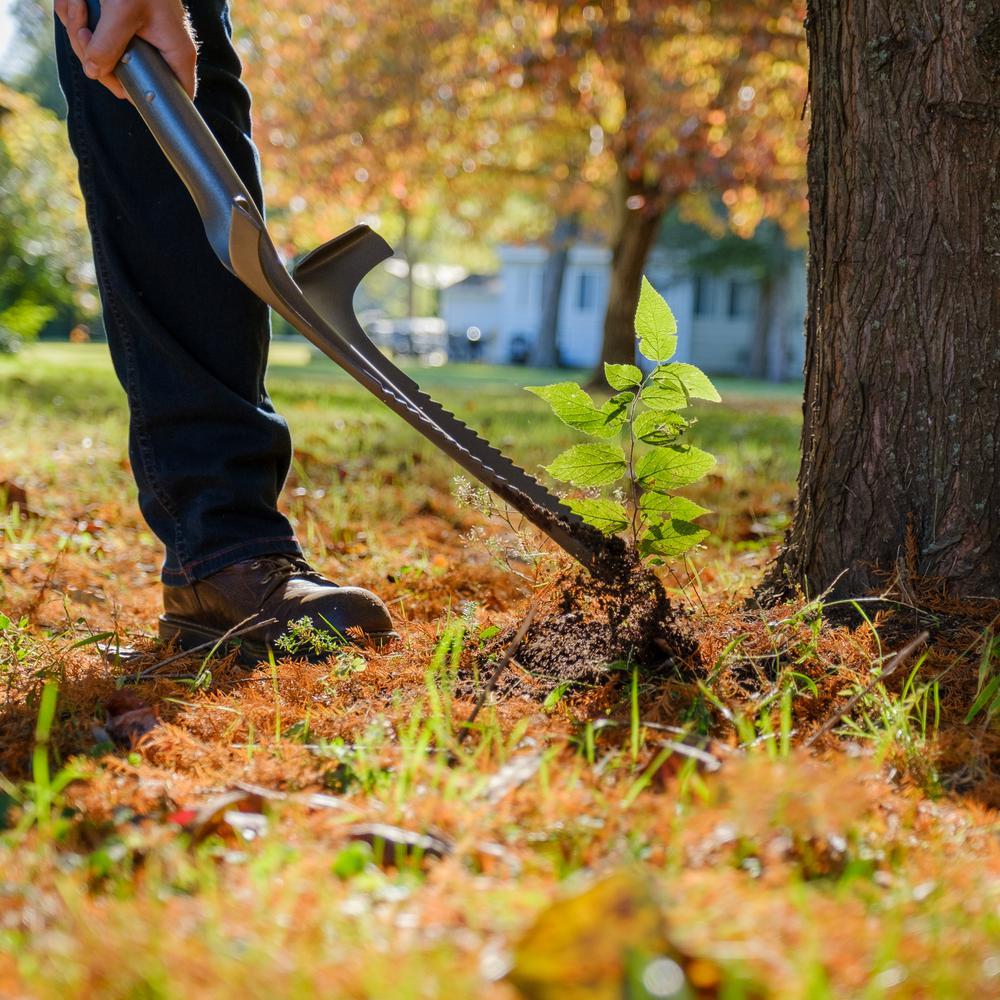 Radius Garden Root Slayer 44 In Carbon Steel Deep Weeder 23511 The Home Depot