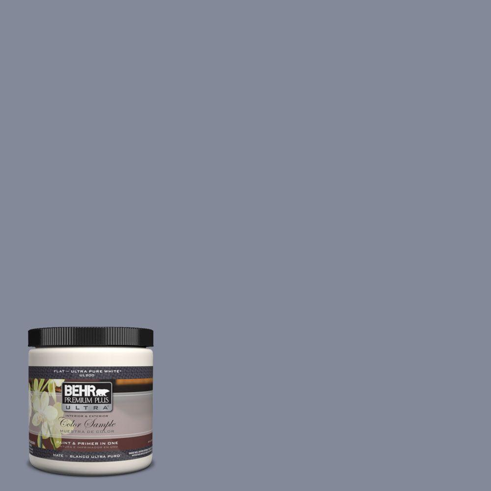BEHR Premium Plus Ultra 8 oz. #UL240-7 River Tour Interior/Exterior Paint Sample